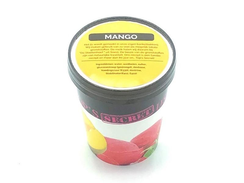 Mango Sorbet IJS