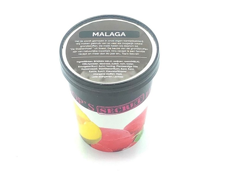 Malaga IJS